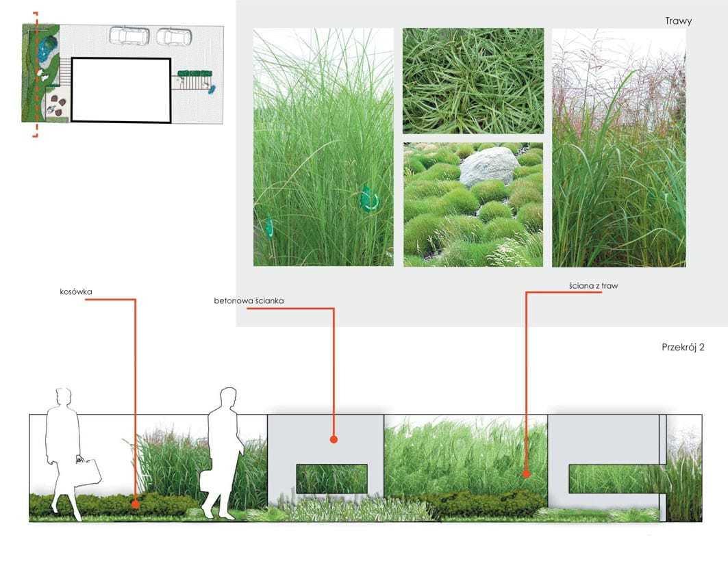 projekt ogrodu dla salonu